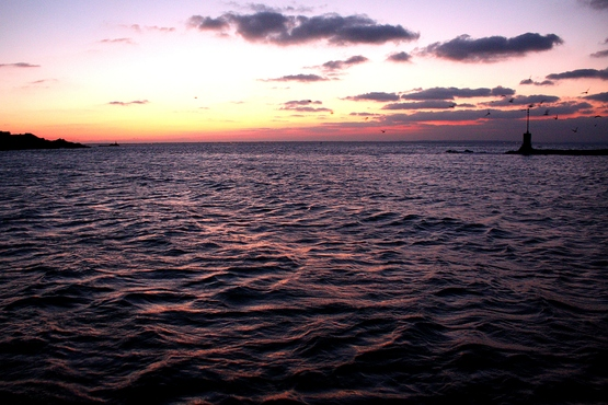 îles Saint Marcouf