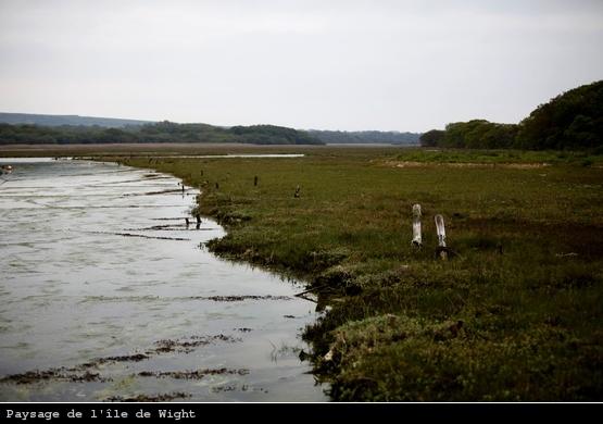 Paysage de l'île de Wight