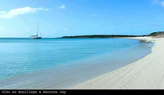 Oleo au mouillage à Raccoon Cay, Ragged islands, Bahamas