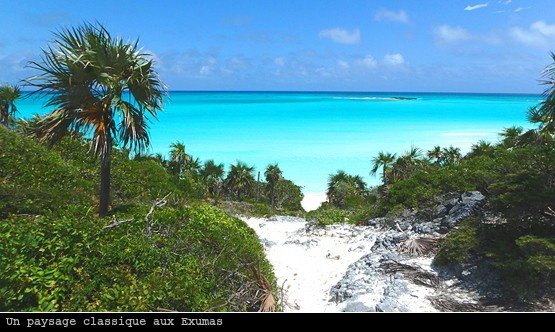 Jolie vue depuis une île des Exumas aux Bahamas