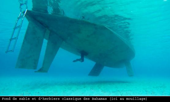 Le voilier Oleo au mouillage à Flamingo Cay aux Bahamas